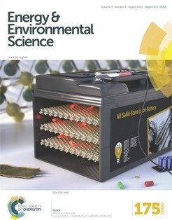 Front Cover Image from 2016 publication [98]