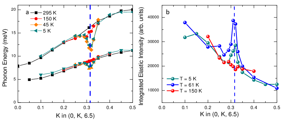 <p><strong>Fig. 3:</strong> (a) Dispersion of the two low-energy phonons in the <em>ZT</em> direction at <em>T</em>=295, 150, 45, and 5K. (b) Momentum dependence of the intensity of the central peak at <em>T</em>=150, 61 and 5K.</p>