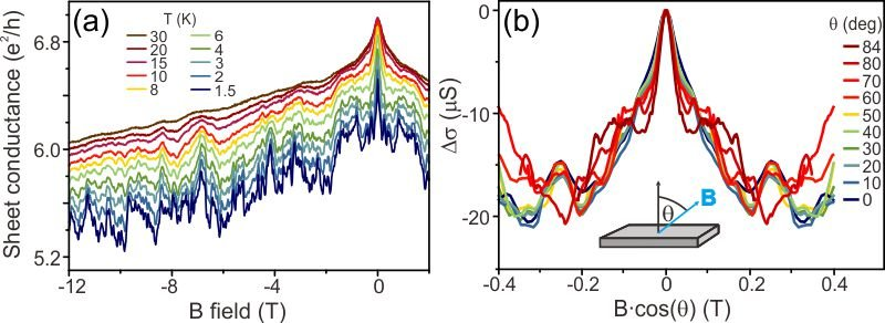 <p><strong>Fig. 3:</strong> (a) Magnetoconductance of a thin Kawazulite sheet at different temperatures, featuring weak antilocalization and universal conductance fluctuations. (b) Low <em>B</em>-field range of the data in panel (a), plotted as a function of the <em>B</em>-field component normal to the surface.</p>