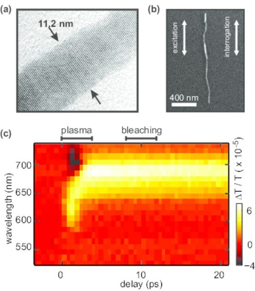 "<strong>Fig. 2: </strong>Experimental data: (a) Transmission electron microscopy image of a typical CdSe nanowire, showing an almost defect-free lattice and a constant radius over large parts of the wire. (b) SEM image of the wire under investigation with a wire radius of approx. 5.8nm. (c) The time dependent nonlinear response shows a fast decaying response (labeled ""'plasma"") and a slower decaying feature that we attribute to excitonic transition bleaching."