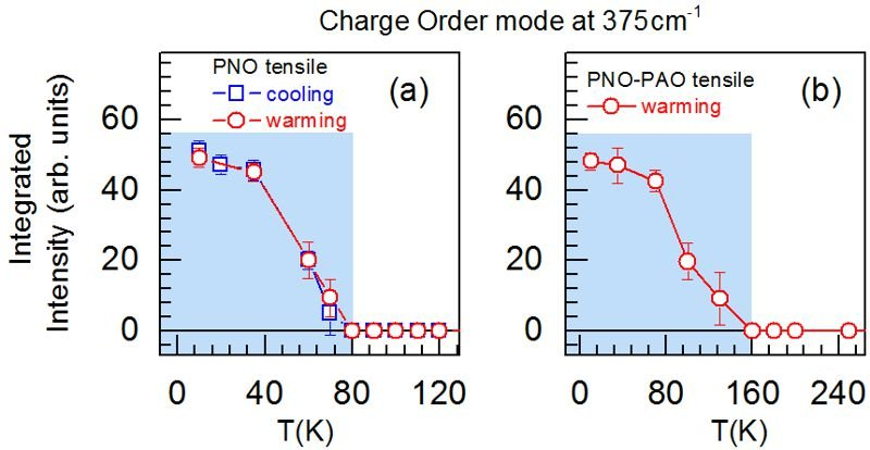 <strong>Fig. 2:</strong> Temperature dependence of the intensity of the anomalous phonon mode at 375 cm<sup>–1</sup> in (a) the PNO film and (b) the PNO–PAO SL under tensile strain. No hysteresis is observed. In the shaded areas, the film and the SL are insulating.