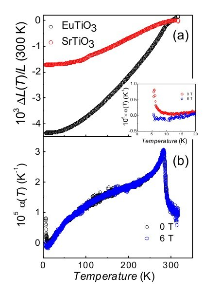 Fig. 1: (a) Thermal expansion of SrTiO3 and EuTiO3 versus temperature. Anomalies near 105 K and 282 K are clearly visible. (b) Thermal expansion coefficient of EuTiO3 versus temperature measured at 0 T and 6 T. The inset shows the field dependence of the expansion coefficient near the Néel temperature.
