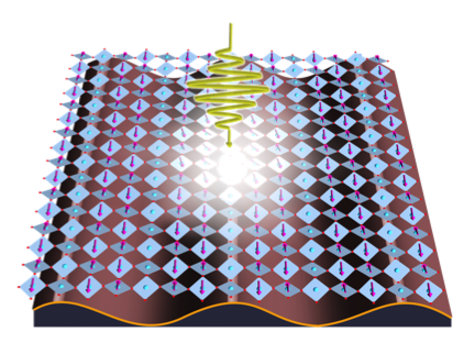 Ultrafast Control and Spectroscopy of Complex Quantum Materials