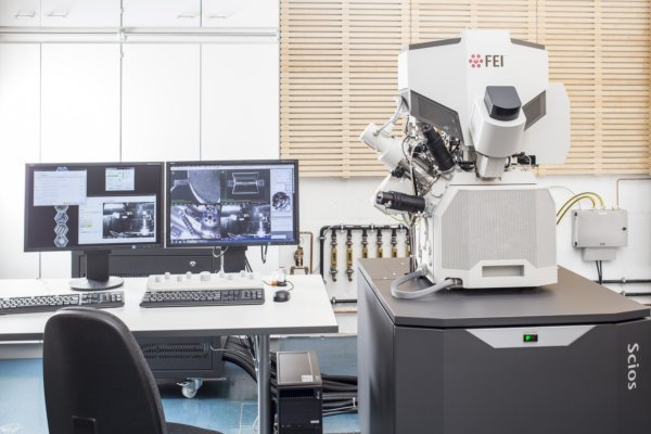 The group has three SEMs, excellent for imaging, EDX or WDX. The LEO 438VP allows large tilt angles and can be used for orientation imaging microscopy. The EPMA Cameca SX 100 is used for WDX and has special anti-contamination equipment installed. The Zeiss DSM 982 Gemini is the highest resolution SEM in the group.