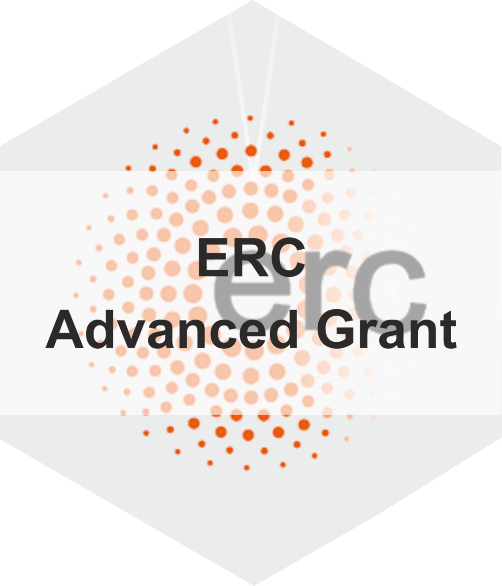 <strong>ERC Advanced Grant </strong>