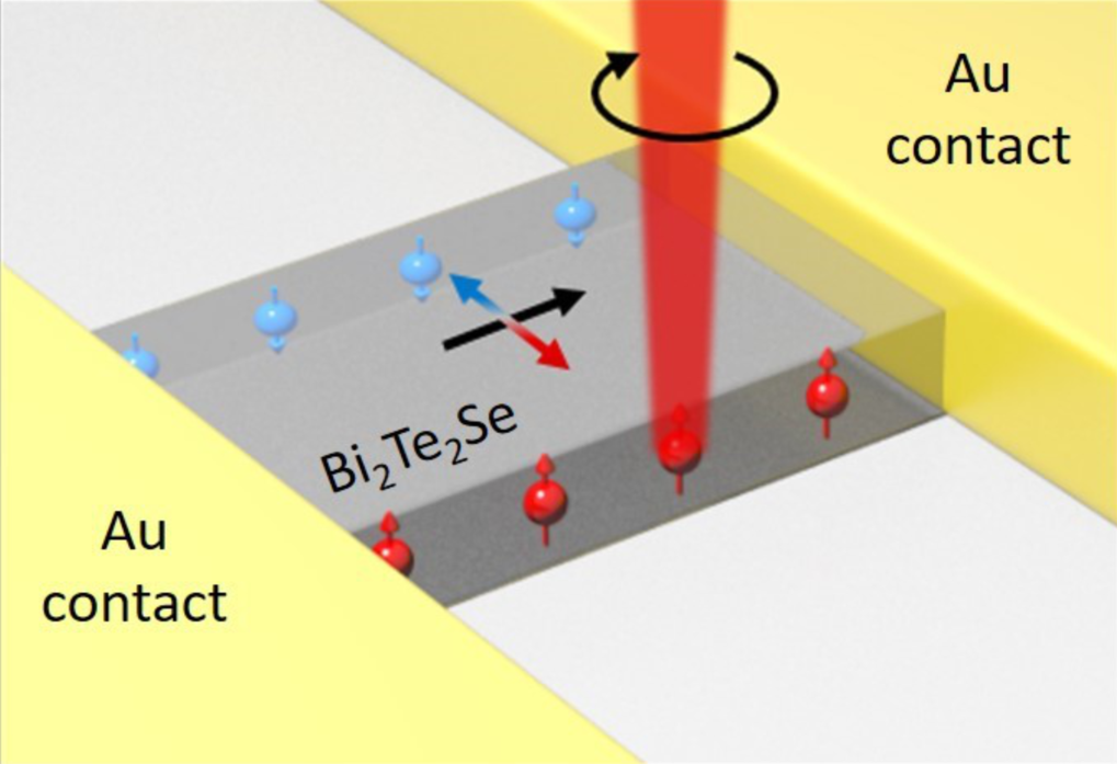 The strong spin-orbit coupling in three-dimensional topological insulators imparts a transversal spin Hall effect supported by their bulk states. It is demonstrated that the resulting spin accumulation at the lateral edges of Bi2Te2Se nanoplatelets can be effectively read out at room temperature through the local detection of a helical, bias-dependent photoconductance. The spin accumulation is further supported by the observation of a finite bias-dependent Kerr angle at the nanoplatelet edges.