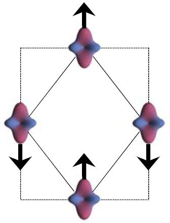<strong>Magnetoelastic coupling of pseudospins</strong>