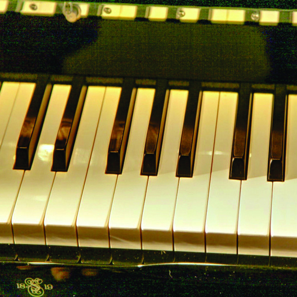 <br /> <p>Bio-Inspired Synthetic Ivory as a Sustainable Material for Piano Keys</p>